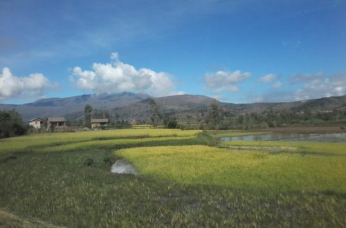 Article : Portfolio de la ville de Manakara!